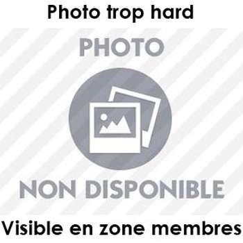 Cochonne à fister à Marnes-la-Coquette
